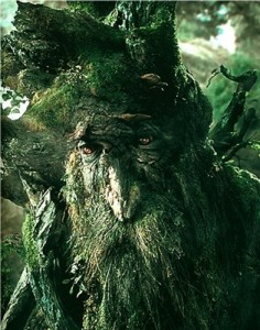 Sad Treebeard doesn't like this post